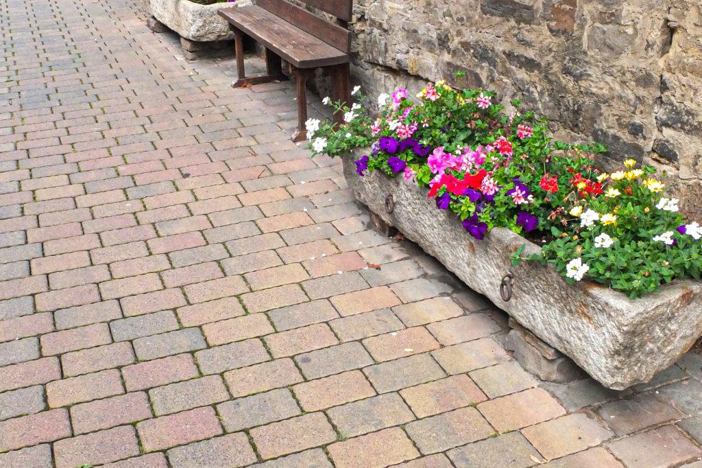 Tonika Pflastersteine vor dem Haus mit Blumen